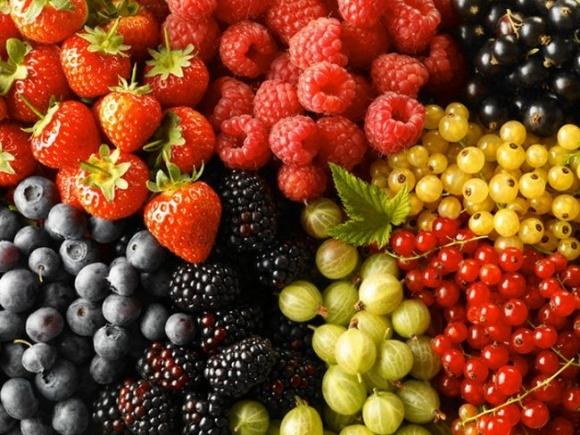 Экспорт ягод за последние три года вырос в 4 раза фото, иллюстрация