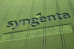Syngenta інвестувала $ 240 млн в заводи Бразилії та Швейцарії  фото, ілюстрація