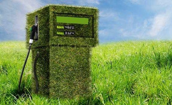 Украина втрое нарастила производство биоэнергетики фото, иллюстрация