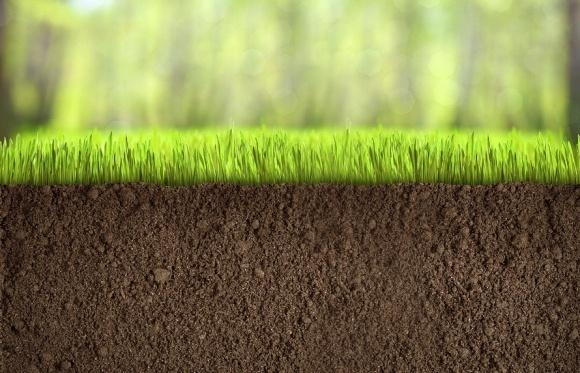 99% ОТГ вже почали процес отримання земель у власність фото, ілюстрація