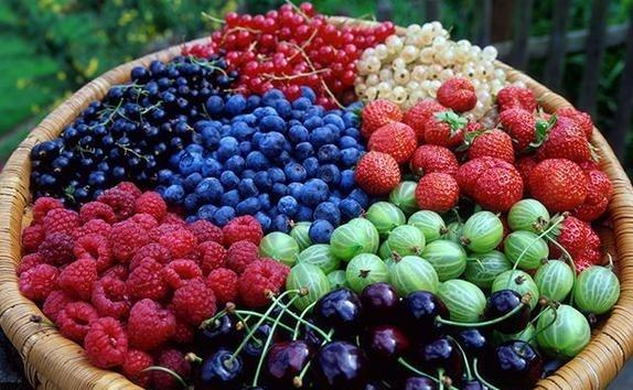 Названі найпопулярніші органічні ягоди фото, ілюстрація