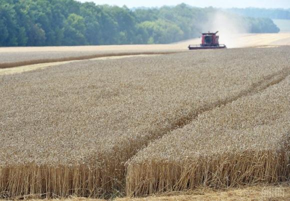 В Україні подорожчало виробництво сільгосппродукції - Держстат фото, ілюстрація