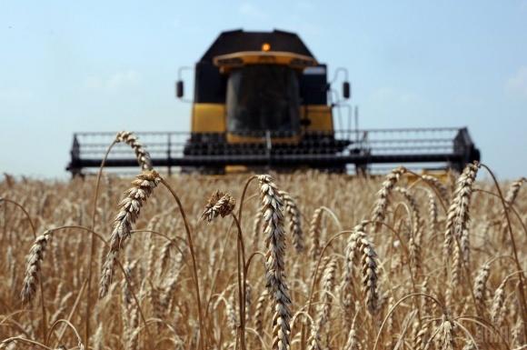 Державна зернова корпорація втричі збільшила авансові платежі аграріям фото, ілюстрація