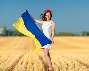 На Луганщині та Донеччині непоганий урожай, але проблеми зі збутом фото, ілюстрація