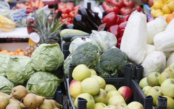 Производство сельхозпродукции в Украине за январь-июнь выросло на 6% фото, иллюстрация