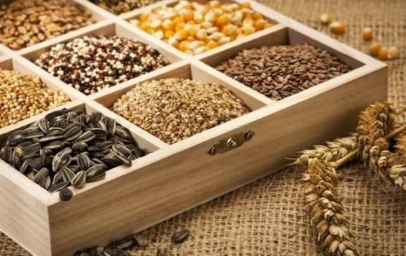 В 2017 году Украина экспортировала семян основных сельхозкультур на 15,2 млн долл. США  фото, иллюстрация