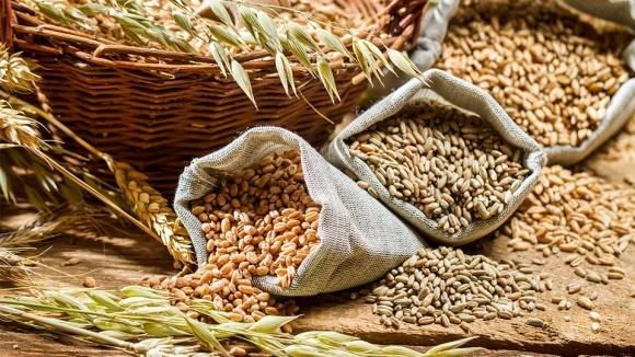 «Аграрный фонд» законтрактовал 666 тыс. тонн зерновых на 2,9 млрд грн фото, иллюстрация
