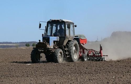 Посівна-2019: Посів ранніх зернових та зернобобових культур здійснюється вже у 7 областях фото, ілюстрація