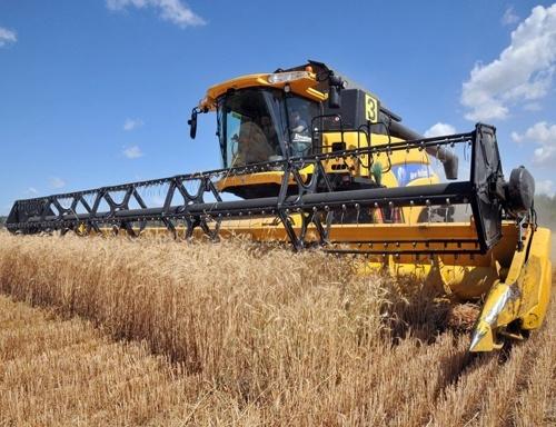 Миколаївщина експортувала 68% загального обсягу всієї аграрної продукції регіону фото, ілюстрація