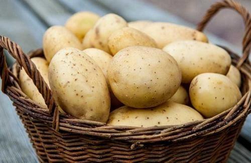 Ціна на картоплю в Україні найвища не тільки в Європі, але і у всій Євразії фото, ілюстрація