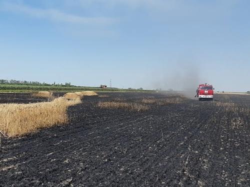 Николаевская область: спасатели ликвидировали пожар зерновых культур фото, иллюстрация