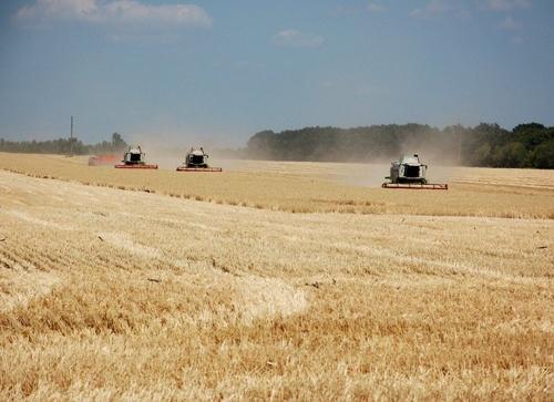 В Україні за чотири місяці зростання сільгоспвиробництва склало 2.3%, - Держстат фото, ілюстрація