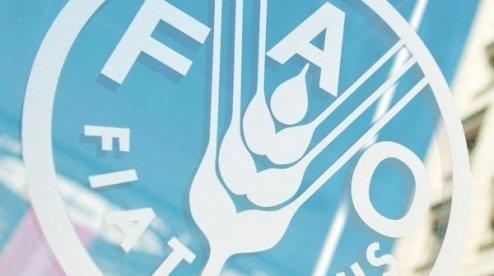 Індекс продовольчих цін ФАО зростає другий місяць поспіль фото, ілюстрація