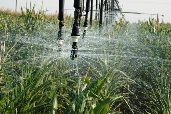 Збереження води: цифрові рішення в умовах зміни клімату фото, ілюстрація