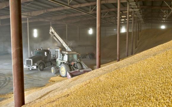 ГПЗКУ приняла на хранение в три раза больше зерна нового урожая, чем в прошлом году фото, иллюстрация