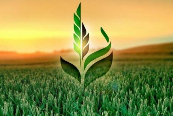 Аграрний фонд пропонує для аграріїв програму реалізації мінеральних добрив фото, ілюстрація