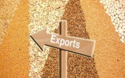 Нигерия может стать логистическим хабом для Украины при выходе на африканские рынки фото, иллюстрация