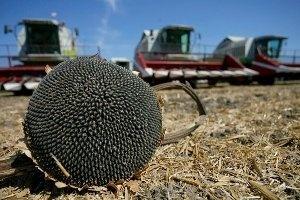 Черкащина – у трійці областей-лідерів за врожайністю зернових, – Віталій Коваль фото, ілюстрація