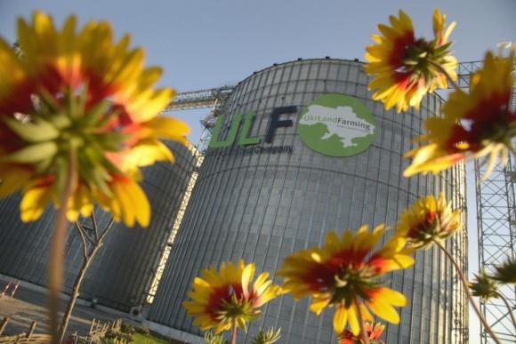 Среди ТОП-10 крупнейших компаний Украины половина представляют АПК фото, иллюстрация