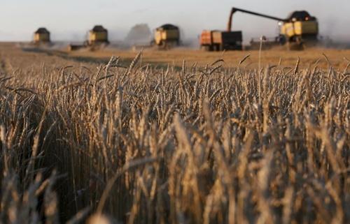 Канадський проект – українським сільгоспвиробникам: відкритий доступ до інноваційних товарів фото, ілюстрація