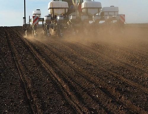 Яровой сев в Ривненской области выполнен на 90% прогнозируемых площадей фото, иллюстрация