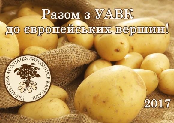 Асоціація виробників картоплі шукає ринки збуту в сусідніх країнах фото, ілюстрація