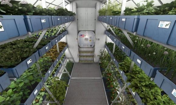 LED-ферма оказалась в центре внимания Нобелевской недели стартапов фото, иллюстрация