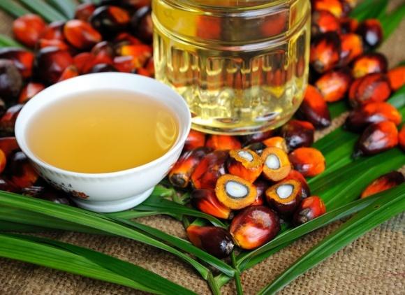 Ухвалення заборони використання пальмової олії очікується восени фото, ілюстрація
