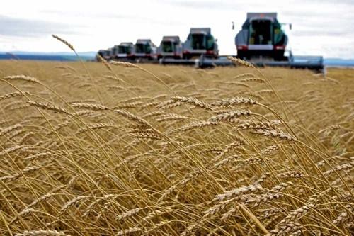 Аграрии Полтавской области начали уборочную кампанию фото, иллюстрация