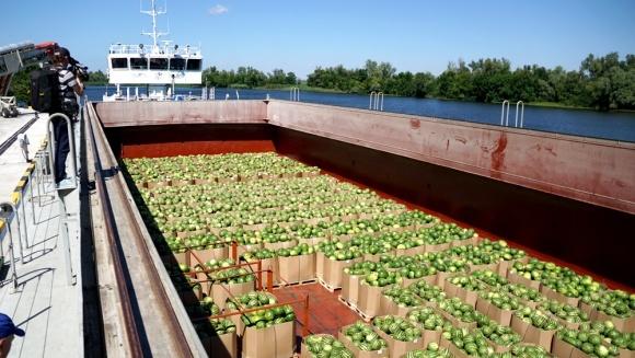 «НИБУЛОН» в начале августа планирует отправить Днепром 500 тонн херсонских арбузов фото, иллюстрация