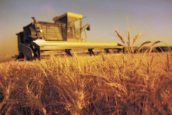 Рада скасувала дотації сільгоспвиробникам фото, ілюстрація