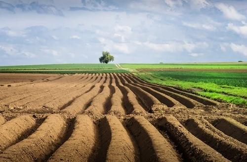 Во время Всеукраинского земельного форума депутаты и аграрии обсудили варианты внедрения рынка земли в Украине фото, иллюстрация