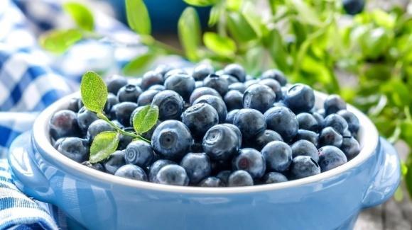 В Ривненской области введут налог за сбор лесных ягод фото, иллюстрация