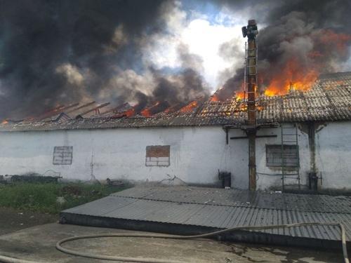 На Кіровоградщині гасили олійний завод фото, ілюстрація