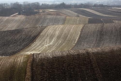 Уряд затвердив Порядок проведення інвентаризації земель фото, ілюстрація