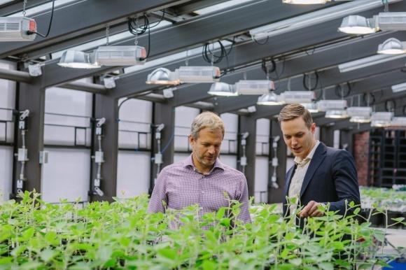 Агростартап Indigo привлек 203 млн долл. с помощью дубайского фонда фото, иллюстрация