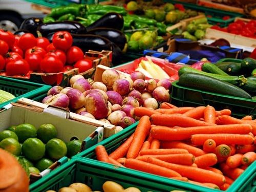 Украина стала одним из пяти крупнейших экспортеров аграрной продукции в страны ЕС фото, иллюстрация