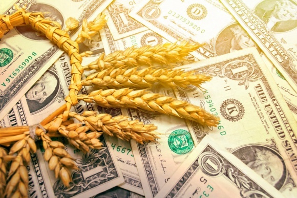 Експорт зернових з України становить майже 6 млн тонн фото, ілюстрація