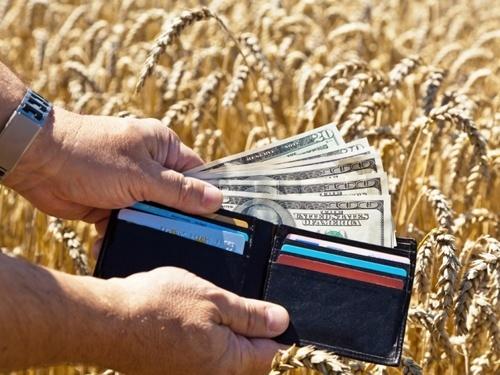 Заробітна плата в сільському господарстві зросла на 24.7% фото, ілюстрація