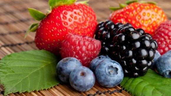 На Полесье будут развивать органическое ягодоводство фото, иллюстрация