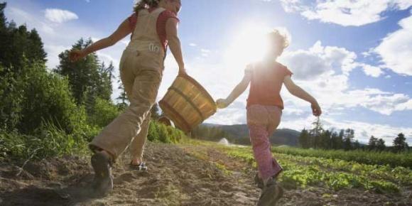 Для сімейних фермерських господарств спрощено оподаткування фото, ілюстрація