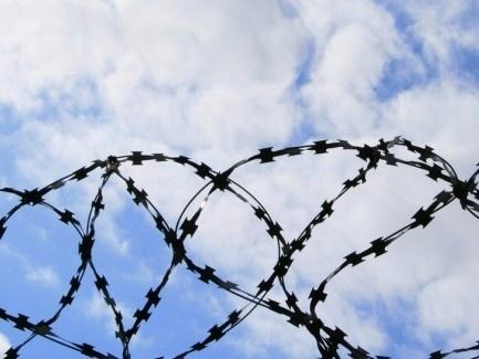 Минюст предлагает сдавать тюремные земли в аренду агрокомпаниям фото, иллюстрация