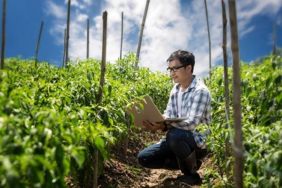 Компания «Байер» запускает онлайн-курс обучения по Надлежащей практики сельского хозяйства фото, иллюстрация