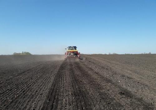 Аграрии засеяли почти 5 млн га яровыми зерновыми культурами фото, иллюстрация