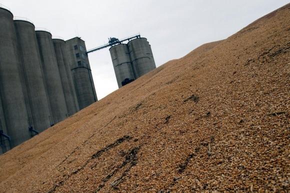 Крым не будет вводить запрет на экспорт зерна фото, иллюстрация