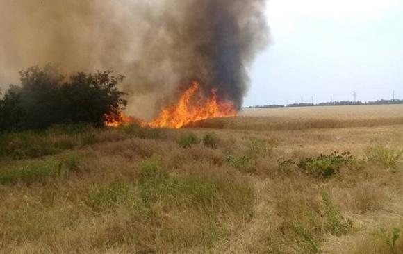 В Херсонской области сгорело 170 га пшеницы фото, иллюстрация