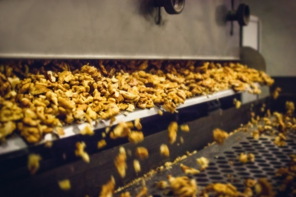 В Винницкой области компания «Украинский грецкий орех» построит завод по переработке ореха фото, иллюстрация