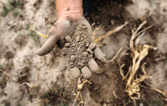 На Півдні  аграрії призупиняють посівну через аномальну посуху фото, ілюстрація