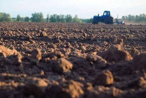 Польша потеряла треть урожая сельхозкультур из-за засухи фото, иллюстрация