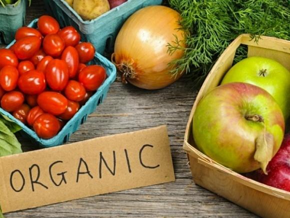 Спрос на органическую продукцию в Украине за год вырос на 5% фото, иллюстрация